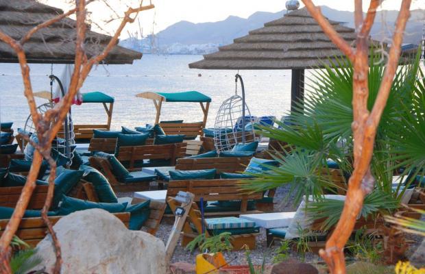 фото отеля Red Sea Hotel (ех.Oasis Red Sea) изображение №17