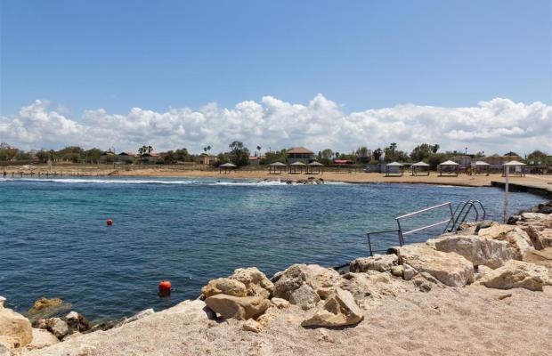 фотографии Olive Dolphin Village Resort изображение №24