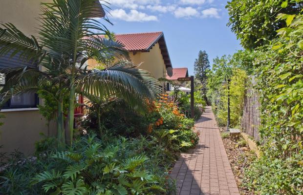 фотографии отеля Olive Dolphin Village Resort изображение №23