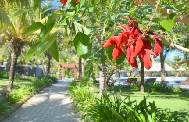 фото Sonata Resort & Spa изображение №38