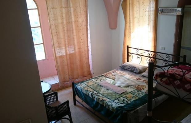 фото отеля New Petra (ех. Petra) изображение №5