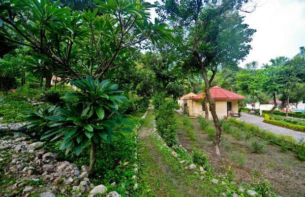 фотографии отеля Corbett Ramganga Resort изображение №3