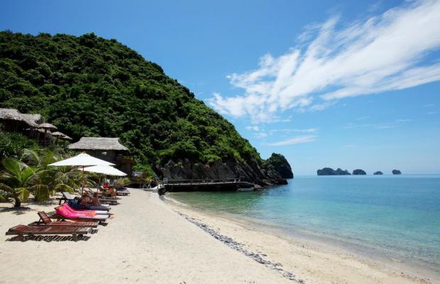фотографии отеля Monkey Island Resort изображение №15