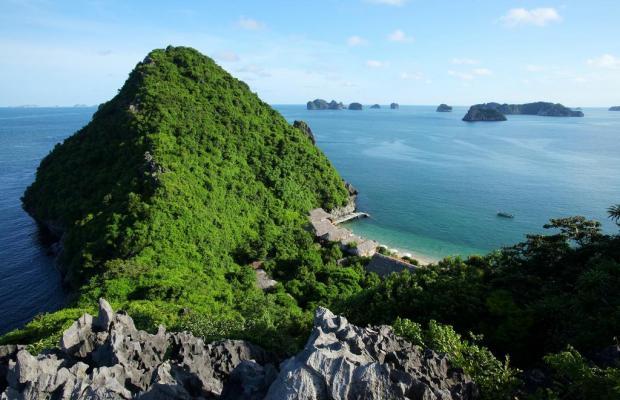 фотографии отеля Monkey Island Resort изображение №7