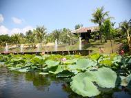 VietStar Resort & SPA (ex. Sao Viet Resort & Spa), 5*