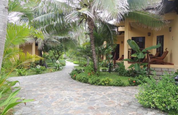 фотографии отеля White Sands Resort изображение №27