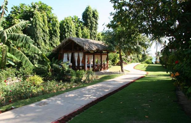 фотографии отеля Bao Quynh Bungalow изображение №15