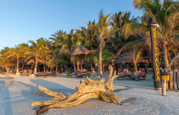 фото отеля Beachfront Hotel La Palapa изображение №5