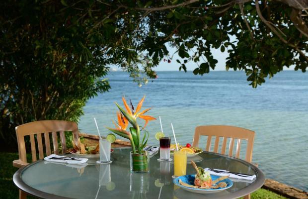 фотографии отеля Sunset Marina Resort & Yacht Club изображение №23