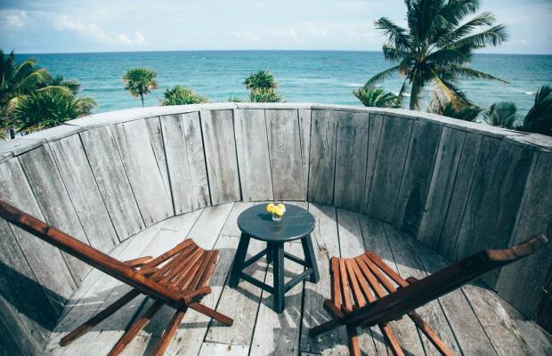 фотографии Papaya playa изображение №4