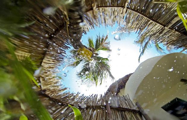 фото отеля Villa Flamingo изображение №9