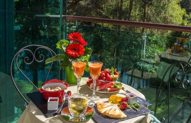 фотографии отеля Medea Spa Hotel изображение №15