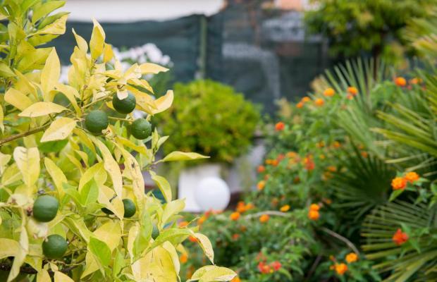 фотографии отеля SHG Portamaggiore (ех. Portamaggiore) изображение №11