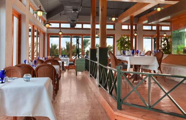 фотографии отеля Hilton Hurghada Resort изображение №27