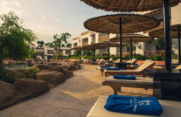 фотографии отеля Domina Coral Bay Elisir Sublime Club (ex. Domina Coral Bay Hotel Elisir) изображение №15