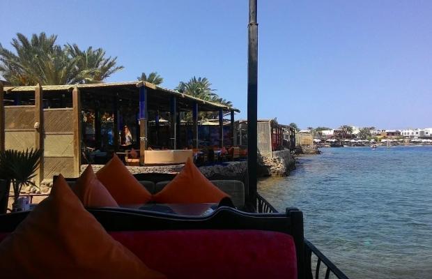 фотографии Ali Baba Hotel изображение №4
