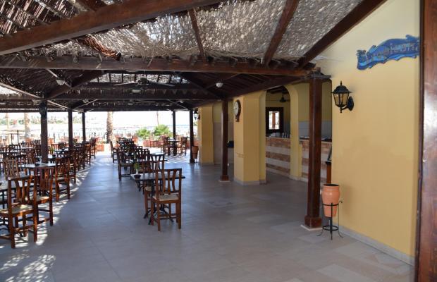 фотографии Jaz Solaya Resort (ex. Solymar Solaya Resort) изображение №8