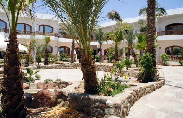 фото отеля Hotel Planet Oasis изображение №33