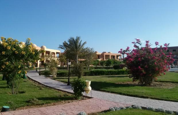 фото отеля Wadi Lahmy Azur изображение №5