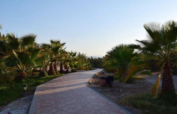 фото отеля Mangrove Bay Resort изображение №17