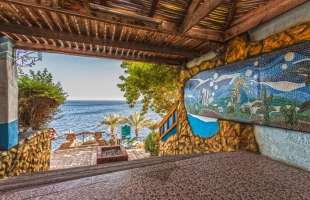 фотографии Maritim Jolie Ville Golf & Resort Um Marikha Bay изображение №8