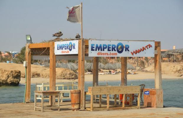 фотографии Zabargad Beach Resort изображение №16