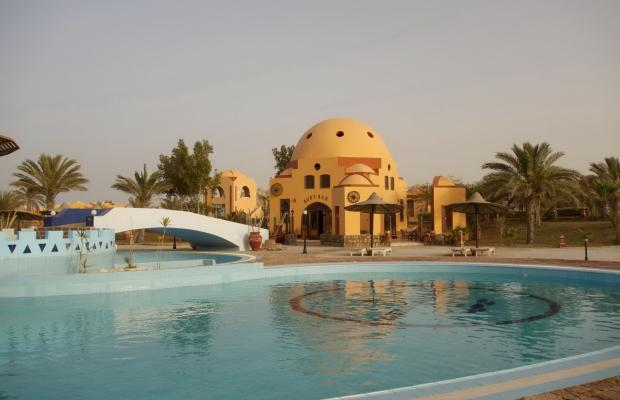 фото Zabargad Beach Resort изображение №10