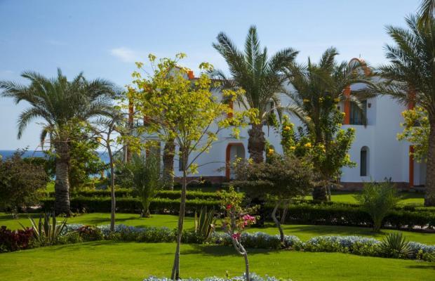 фотографии отеля Fantazia Resort Marsa Alam (ex.Shores Fantazia Resort Marsa Alam) изображение №23