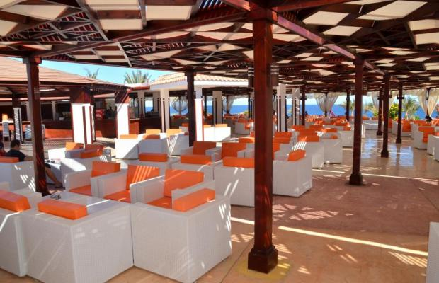 фото отеля Fantazia Resort Marsa Alam (ex.Shores Fantazia Resort Marsa Alam) изображение №17