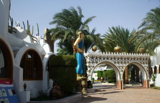 фотографии отеля Aladdin Beach Resort (ex. Dessole Aladdin Beach Resort) изображение №23