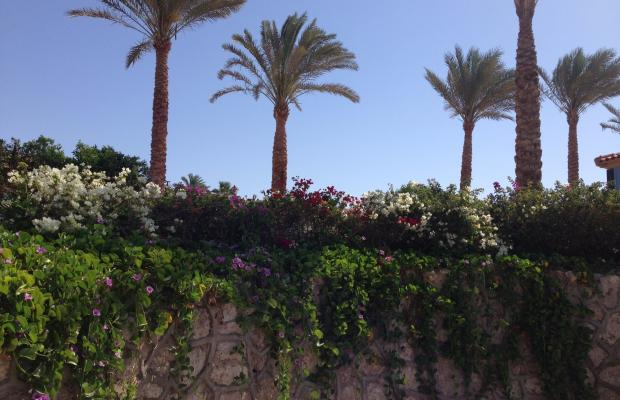 фото отеля Dessole Royal Rojana Resort изображение №25