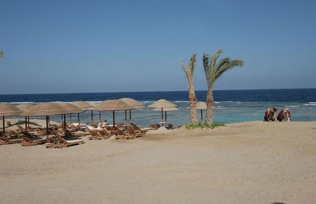 фото отеля Swiss Inn Plaza Resort Marsa Alam (ex. Badawia Resort) изображение №25