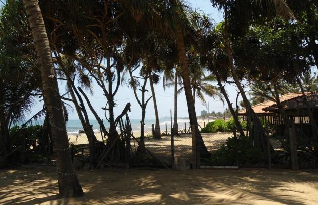 фотографии отеля Ranveli Beach Resort  изображение №27