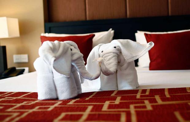 фото отеля Pegasus Reef изображение №17
