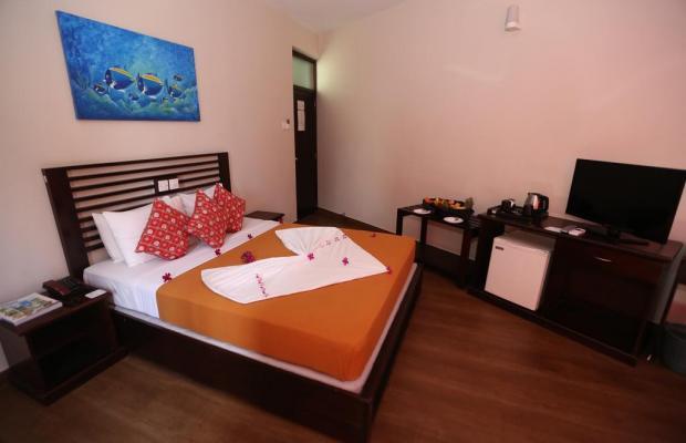фото отеля Hikkaduwa Beach Hotel изображение №5