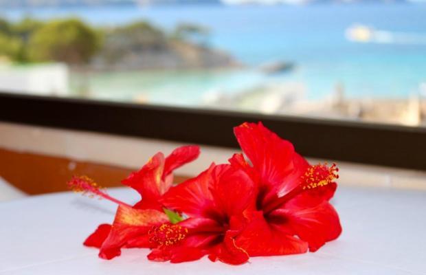 фотографии отеля HSM Linda Playa изображение №19