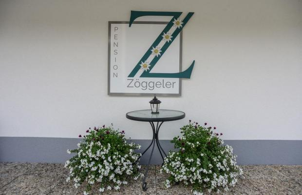 фотографии Zoggeler изображение №8