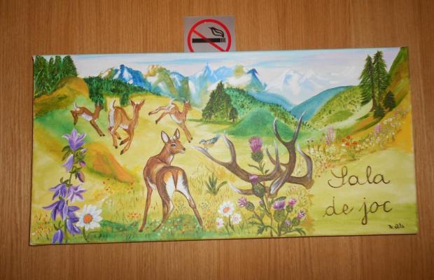 фотографии отеля Camp del Serrat изображение №15