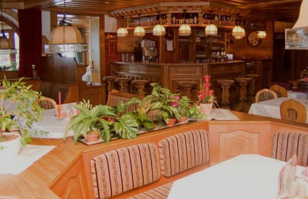 фотографии Alpina Hotel (ex. Alpina Pension) изображение №20