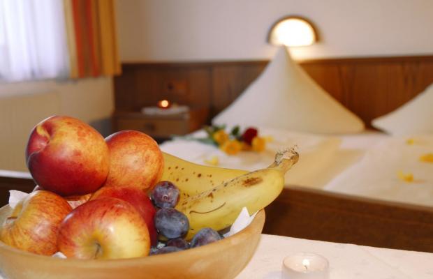 фото отеля Eckartauerhof изображение №13