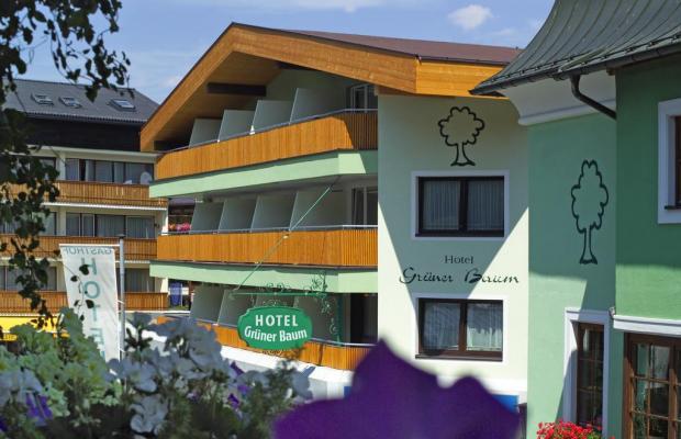 фотографии отеля Gruener Baum Hotel изображение №35