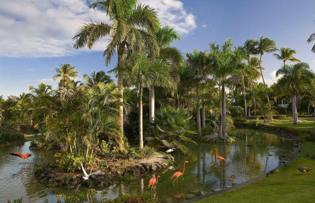 фотографии Melia Caribe Tropical Hotel изображение №28