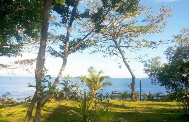 фотографии отеля Panglao Kalikasan Dive Resort изображение №31