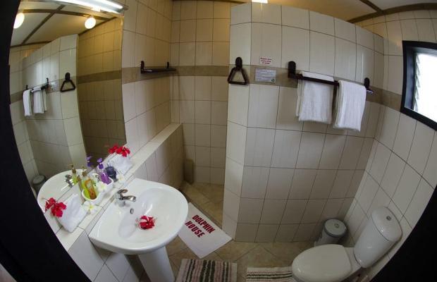 фотографии Dolphin House Resort Moalboal изображение №32