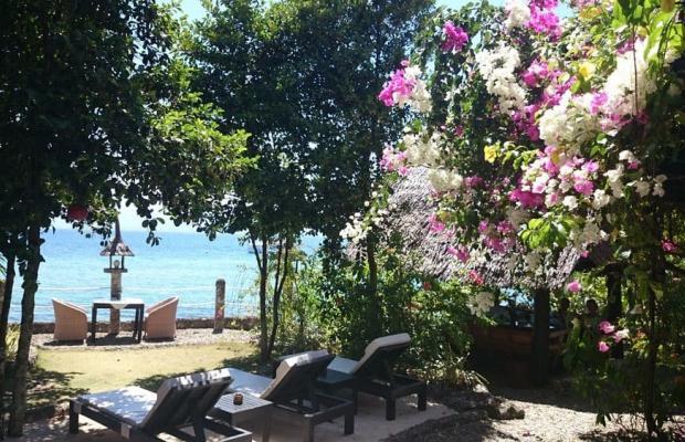 фотографии Dolphin House Resort Moalboal изображение №28