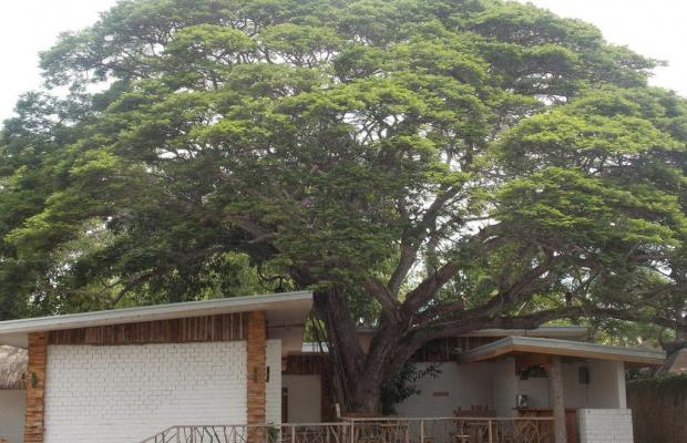 фотографии Dormitels Bohol изображение №28