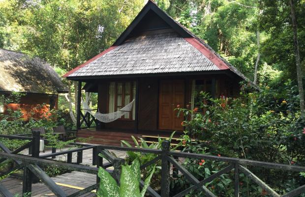 фотографии отеля Sepilok Nature Resort изображение №7