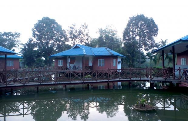 фото Firefly Park Resort изображение №14