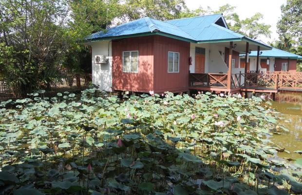 фотографии Firefly Park Resort изображение №12