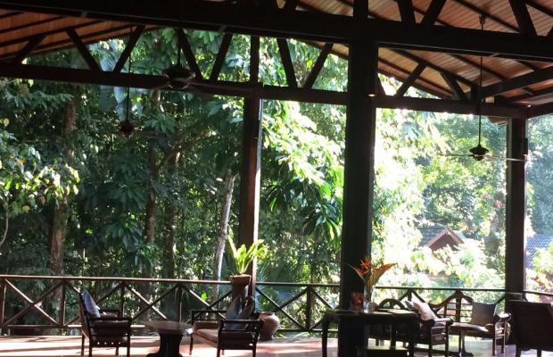 фотографии отеля Borneo Rainforest Lodge изображение №15